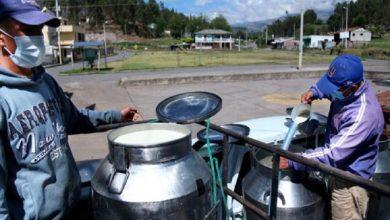 Photo of Desesperación de los ganaderos, por falta de compradores de leche