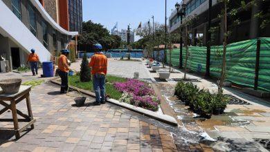 Photo of Unos 20 días tardará aún el inicio de operaciones de la Aerovía; obra, por finalizar