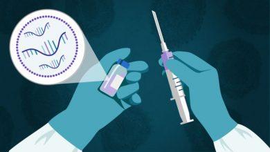 Photo of Covid-19: los 3 pasos del revolucionario método ARNm usado para crear vacunas que muestran resultados eficaces contra el coronavirus