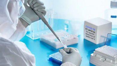 Photo of Prueba del coronavirus: para qué sirven y para qué no los distintos tests de la covid-19