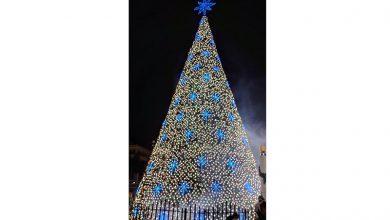 Photo of Guayaquil ya vive la Navidad con el encendido del árbol de la ciudad